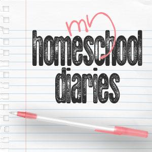 homeschool diaries 1x1